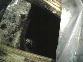 井戸の中を覗く
