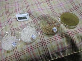 米と麹菌サンプル