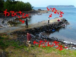 海藻採りに興味津々